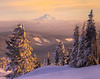 Mount Bachelor From Mount Hood - Mount Hood, Oregon