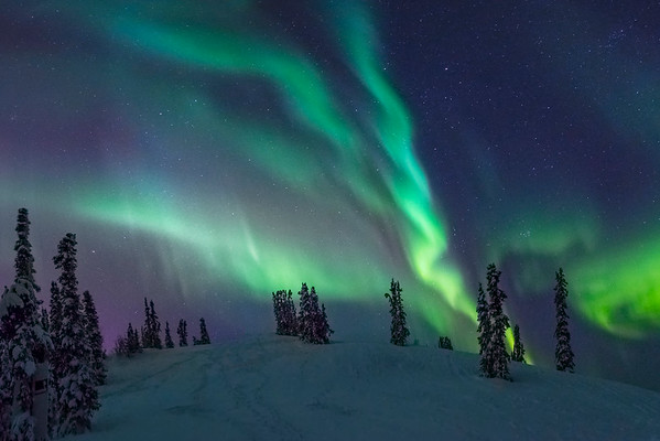 Circle Of Falling Light -Fairbanks, Mt Aurora Skiland, Alaska