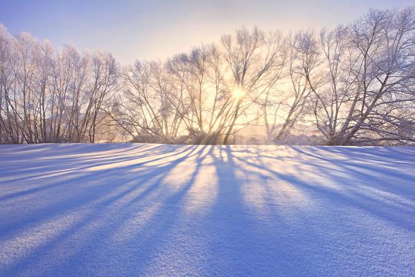 Shadows Of Winter Interest - The Palouse, Washington