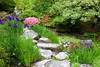 Arboretum-Japanese Garden2