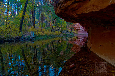 """Cold Autumn Morning"", West Fork Park, Sedona, Az., 10/31/10"