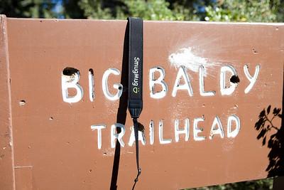 Baldy_Smug-101