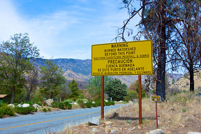 National Forest Warning Sign