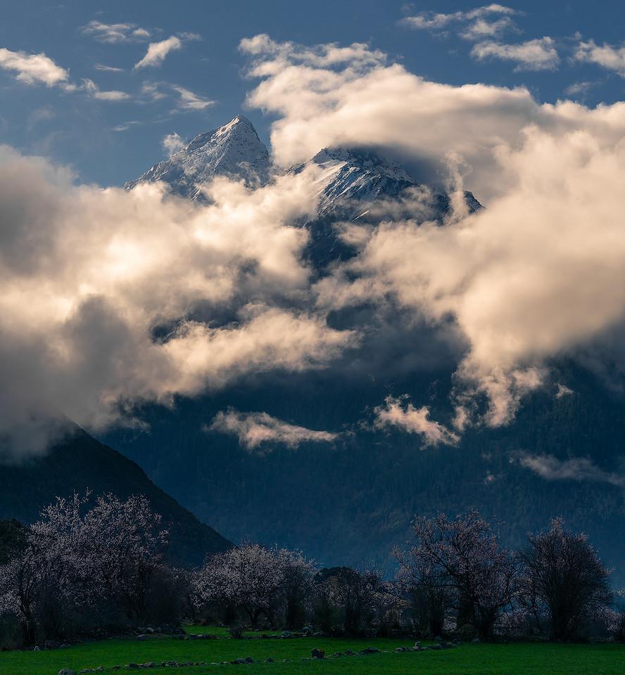 Spring of Tibet