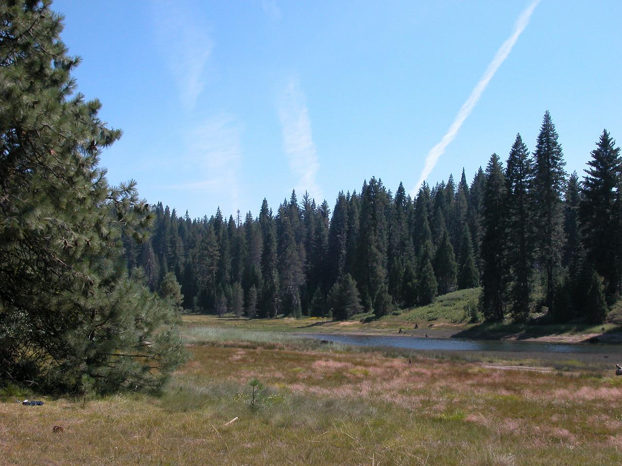 Shaver Lake (4 of 4)