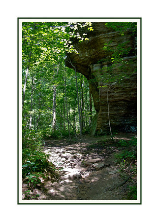 Shawnee National Forest-Bell Smith Spring.