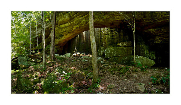 Shawnee National Forest-Bell Smith Spring.  Pano consisting of five seperate frames.