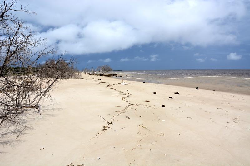 Shell Island, SC