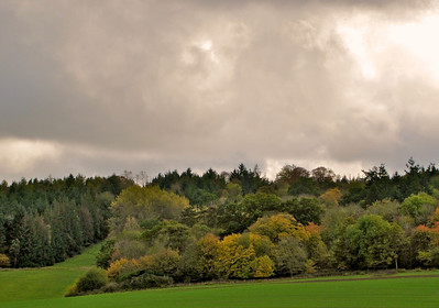 Sherborne Castle Gardens - Apertured