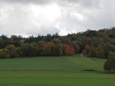 Sherborne Castle Grounds
