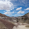 The Bisti Badlands is a remote, desolate area of steeply eroded badlands located 30 miles south of Farmington, NM.  It is designated a wilderness area and managed by the Bureau of Land Management.