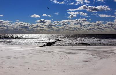 - Shoreline -