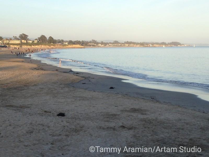 Santa Cruz Boardwalk Beach, April 2013
