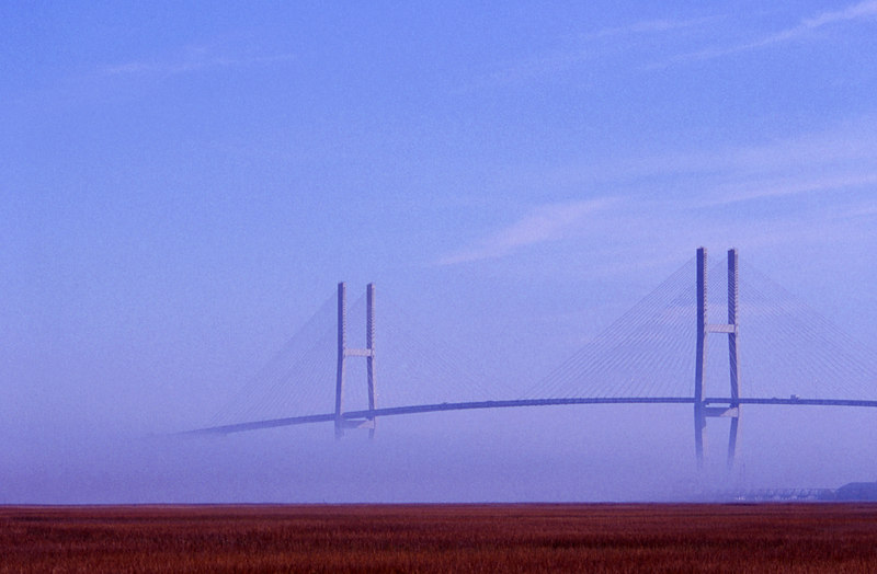 Fog Surrounding the Sidney Lanier Bridge in Brunswick, Georgia