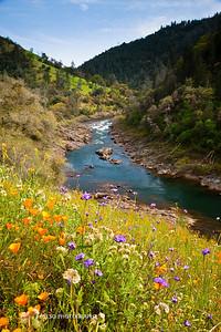 Sierra Foothills-2993