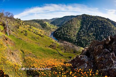 Sierra Foothills-3004-Edit