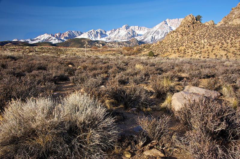 High Desert Sierra Planes