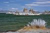Mono Lake Tuffa
