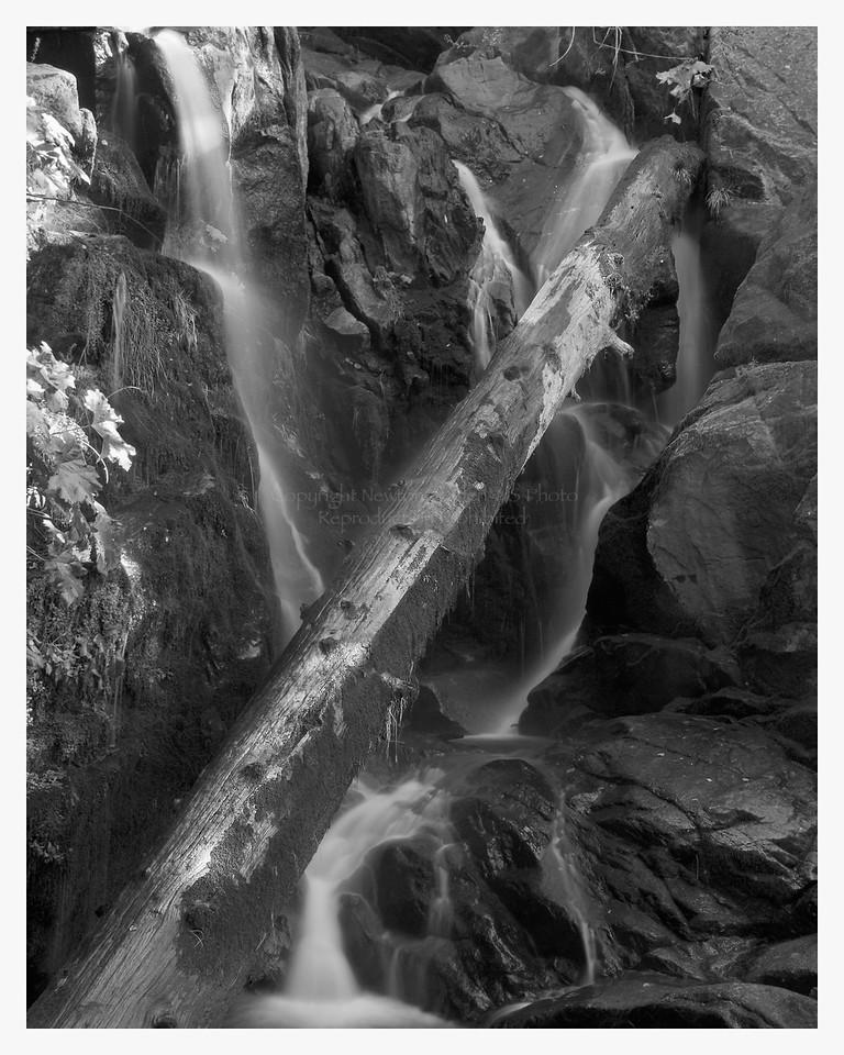 Lewis Creek Falls #1<br /> Yosemite, California