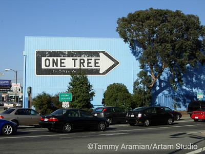 Freeway to One Tree, San Francisco, August 2006