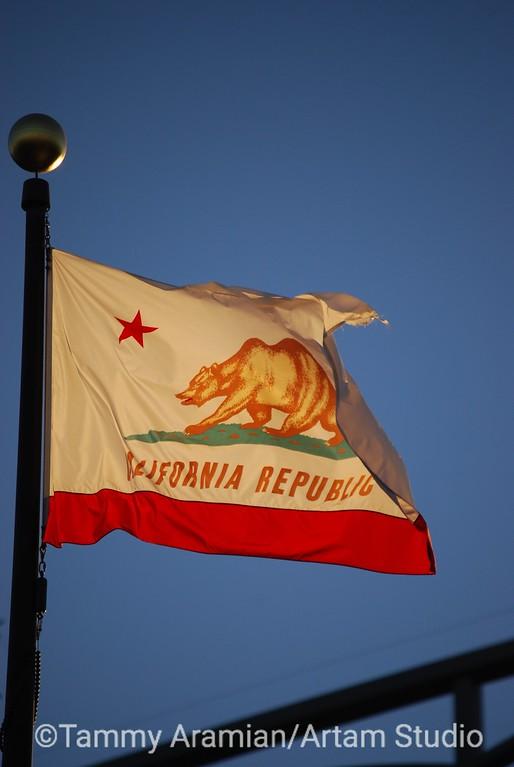 golden California flag, Redwood City, September 2010