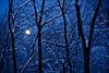 Full Moon Winter Road Scene, Dane County, Wisconsin