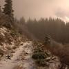 129  G Trail View V