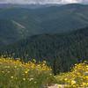 119  G Trail View East Adams V