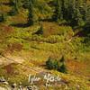64  G Trail Below Compare
