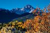 Mt. Sneffels and Scrub Oak