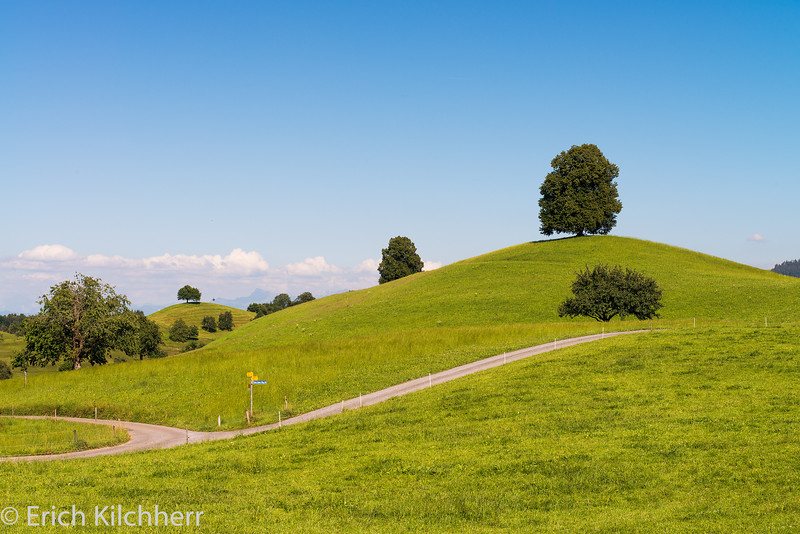 On the way from Schwand to Oberblachen