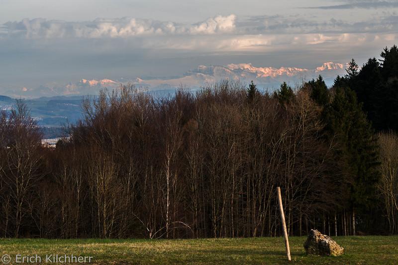 Alps viewed from Linn, Aargau