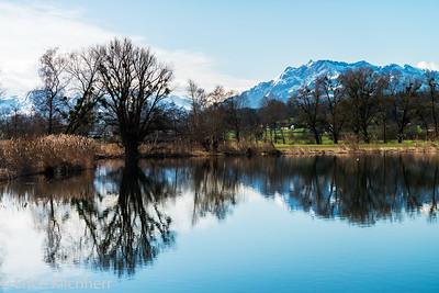 Nature Reserve Lake Baldegg, Canton Lucerne