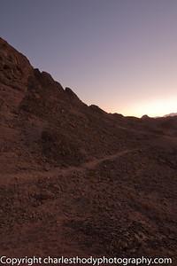 Sinai Desert-5