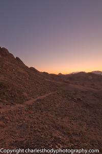 Sinai Desert-6