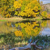 Beaver Creek Fall Reflections