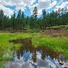 East Clear Creek Reflections