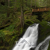 96  G Horseshoe Falls and Bridge