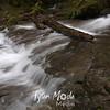 143  G Siouxon Trail Flooded