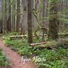 24  G Siouxon Trail