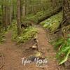 136  G Siouxon Trail