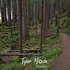 31  G Siouxon Trail Right