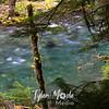 37  G Siouxon Creek