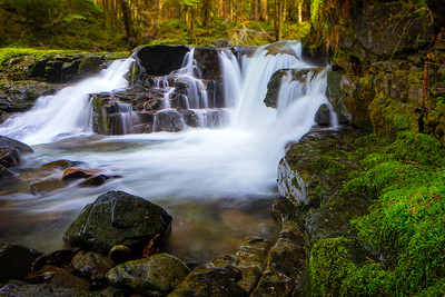 Un-named falls near Wildcat Bridge (Siouxon Creek) (3/13/2015)