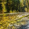 31  G Siouxon Creek