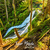 25  G Horseshoe Falls