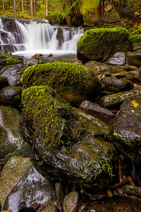 Un-named falls near Wildcat Bridge (3/13/2015)