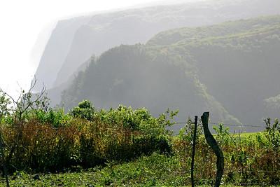 Sighting along the north coast of Kohala on the Big Island of Hawaii