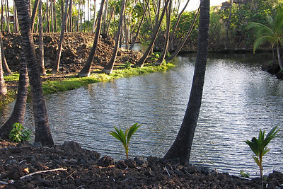 The Kalahuipua'a Fish Ponds on the Big Island of Hawaii