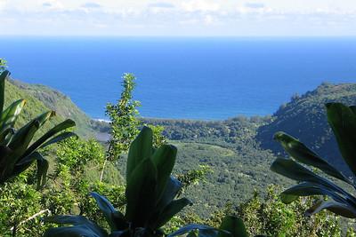 Pololu Valley on the Big Island of Hawaii